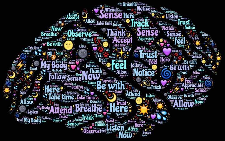 brain-998994_960_720