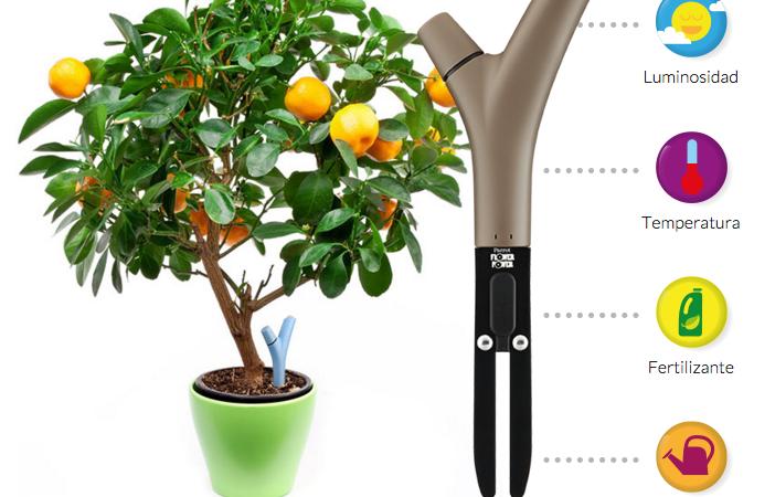 Gadget para cuidar plantas