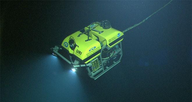 Robots submarinos